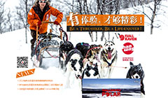 2013瑞典北极狐极地穿越